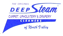 Deep Steam Cleaners